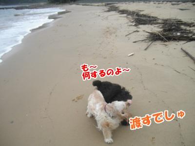 056_20110704180121.jpg