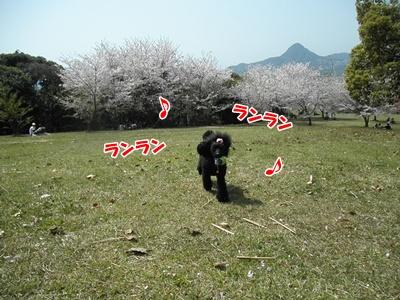 057_20110412204900.jpg