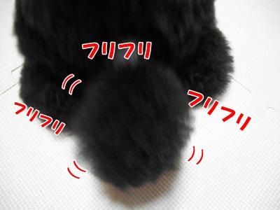 057_20110919225552.jpg