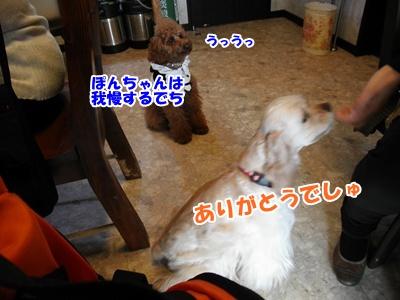 068_20110404210909.jpg