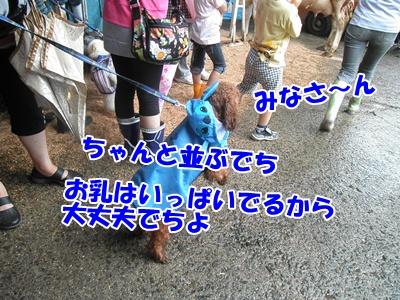 073_20110620140327.jpg