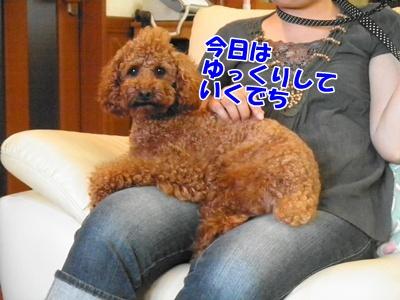 073_20110717214724.jpg