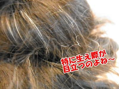 075_20110613211909.jpg