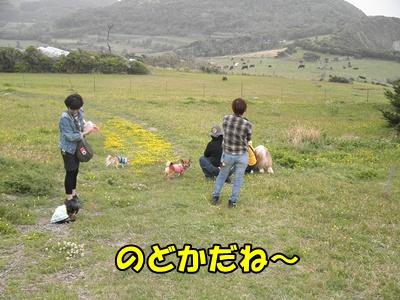 077_20110505213442.jpg