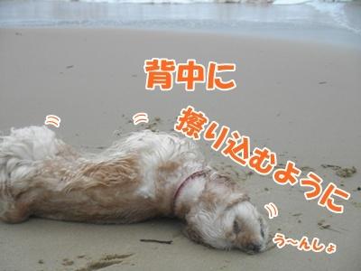 088_20110704172457.jpg