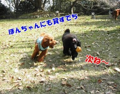 090_20110412210949.jpg