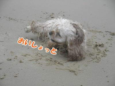 090_20110704172457.jpg