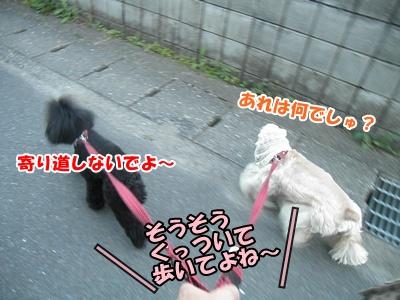 092_20110605234005.jpg