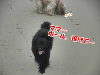 095_20110704180741.jpg