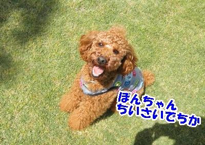 100_20110517213509.jpg