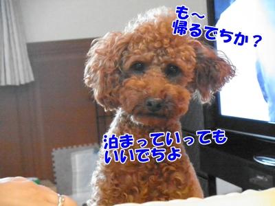103_20110718220622.jpg