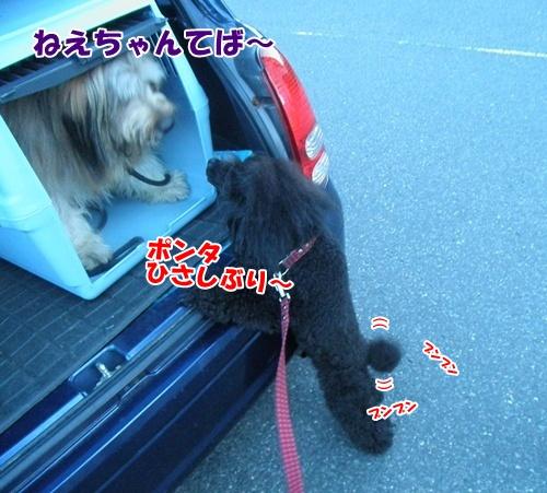 104_20110605234101.jpg