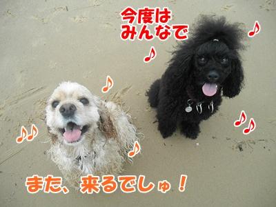 107_20110705155805.jpg