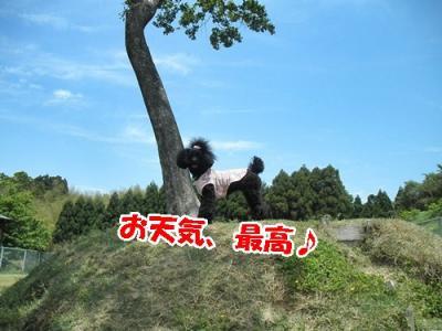 124_20110517220435.jpg
