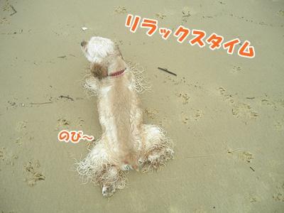 169_20110704172609.jpg