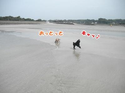 335_20110510214214.jpg