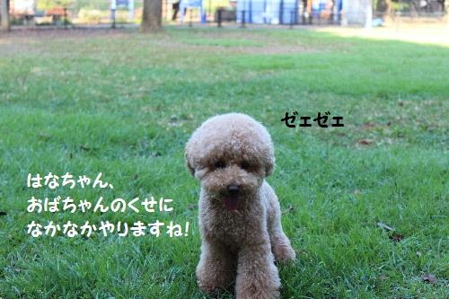 IMG_0464(1).jpg