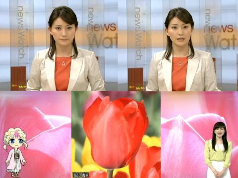 井上あさひ 咲いた、咲いたチューリップ~