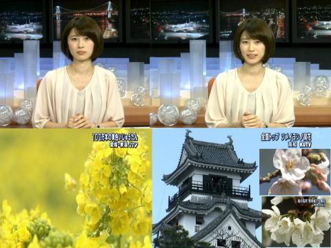 岡村仁美 花の日本列島