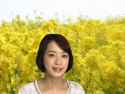八木 麻紗子 菜の花幻想