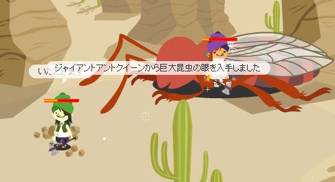 巨大昆虫の眼!!!!