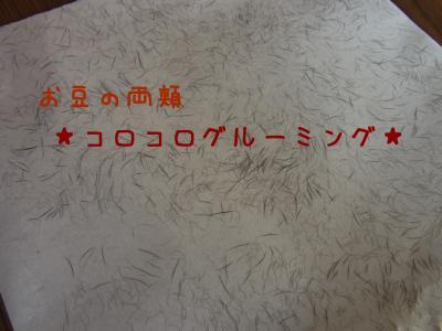 あ002_convert_20111230005122