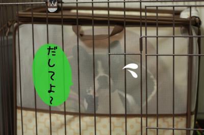 あ007_convert_20120114015517