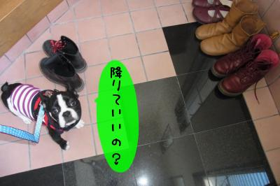 p006_convert_20120117185058