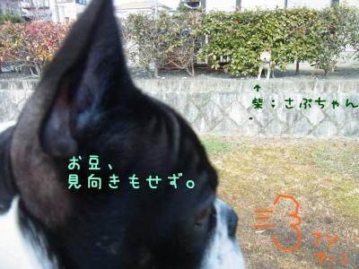 きあ_convert_20120208144834