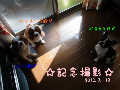 l022_convert_20120324205015