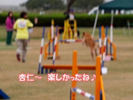 CIMG1361.jpg