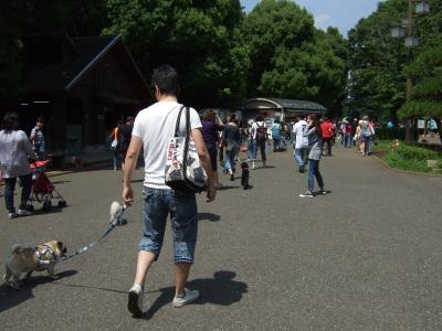 2011_06040013.jpg