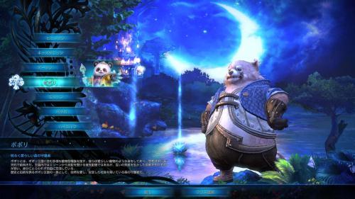 TERA_ScreenShot_20110703_224100.jpg
