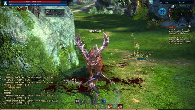 TERA_ScreenShot_20110703_224902.jpg