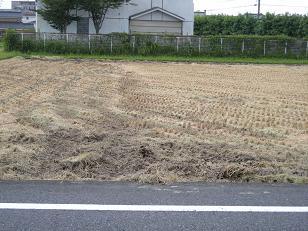刈入れ後の田んぼ