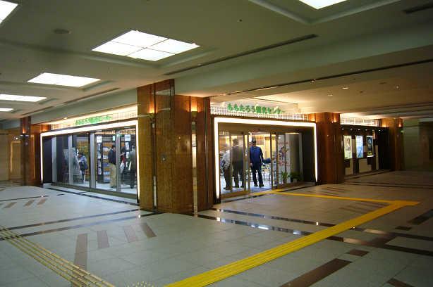 観光センター1