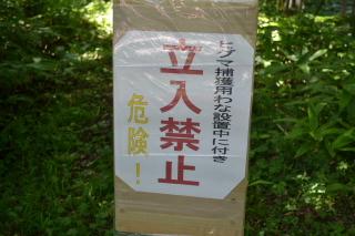 201108190001.jpg