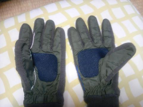 20101112手袋2