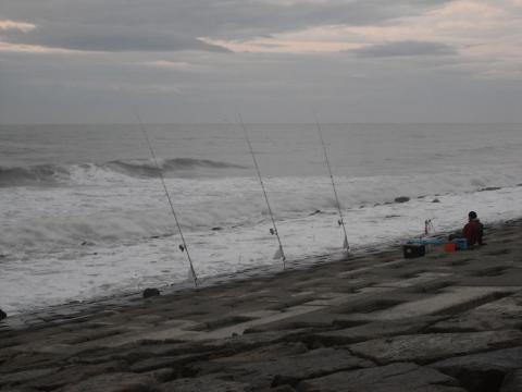 鮭釣り ぶっ込みでの鮭釣り