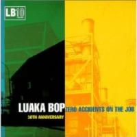 Luaka Bop 10th Anniversary Zero Accidents on the Job(変換後)