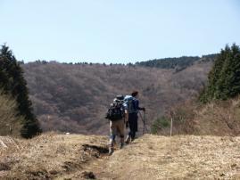 11.04.17.明神ヶ岳19