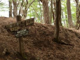 110504塔の岳登山11
