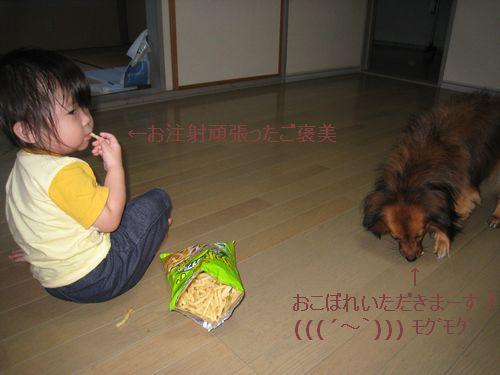 こうちゃん・アリア171-1