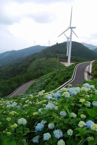大川原高原7