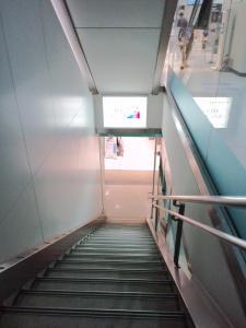 2011.07.08ドレミ階段