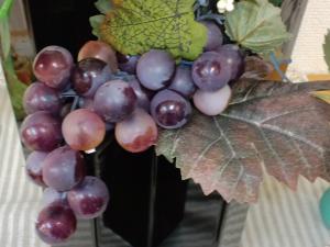 サロンエントランス葡萄