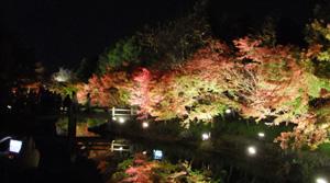 バンザイ日本