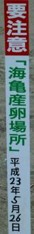 大岐ビーチ・クリーン - three
