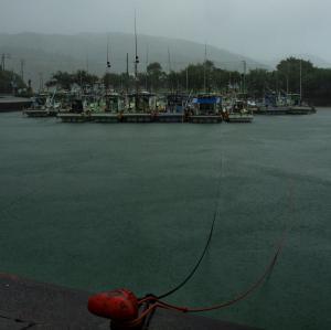 土佐清水漁船-台風6号-2011年