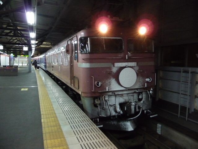 P1050191.jpg